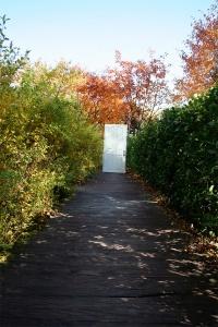 lisa park 1
