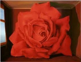 rosa Magritte