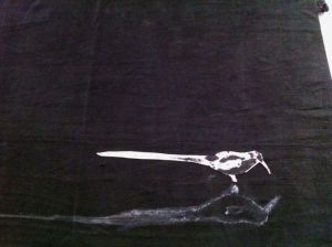 Teresa Matas, Ocells, paper i tela